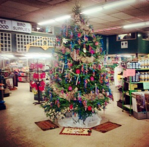 Christmas Tree at Ritchie Feed & Seed